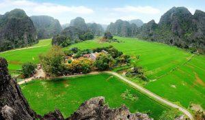 Toàn cảnh đền Thái Vi